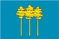 Флаг г. Димитровград