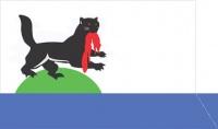 Флаг г. Иркутск