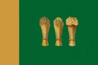 Флаг г. Пенза